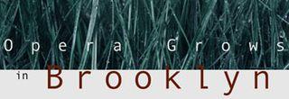 OperaBrooklyn-banner2